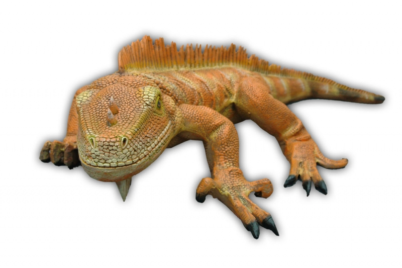 Iguana (New Color) 3 Ft Long