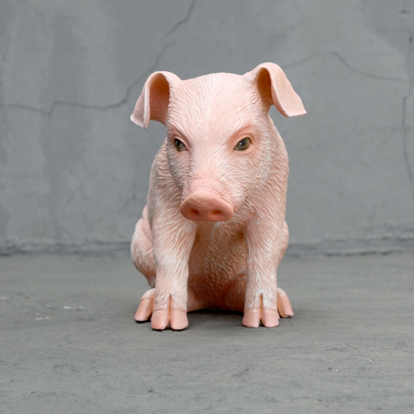 Adorable sitting piglet
