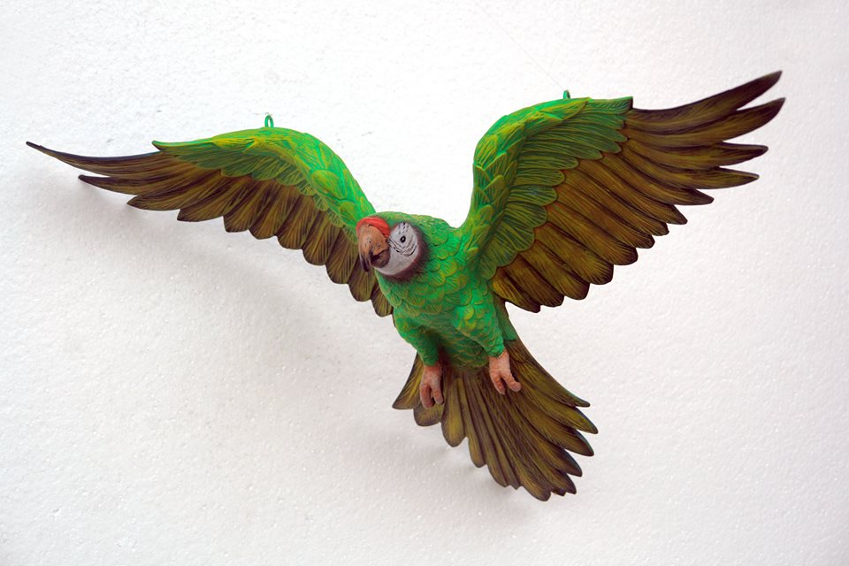 Parrot Flying (Green)