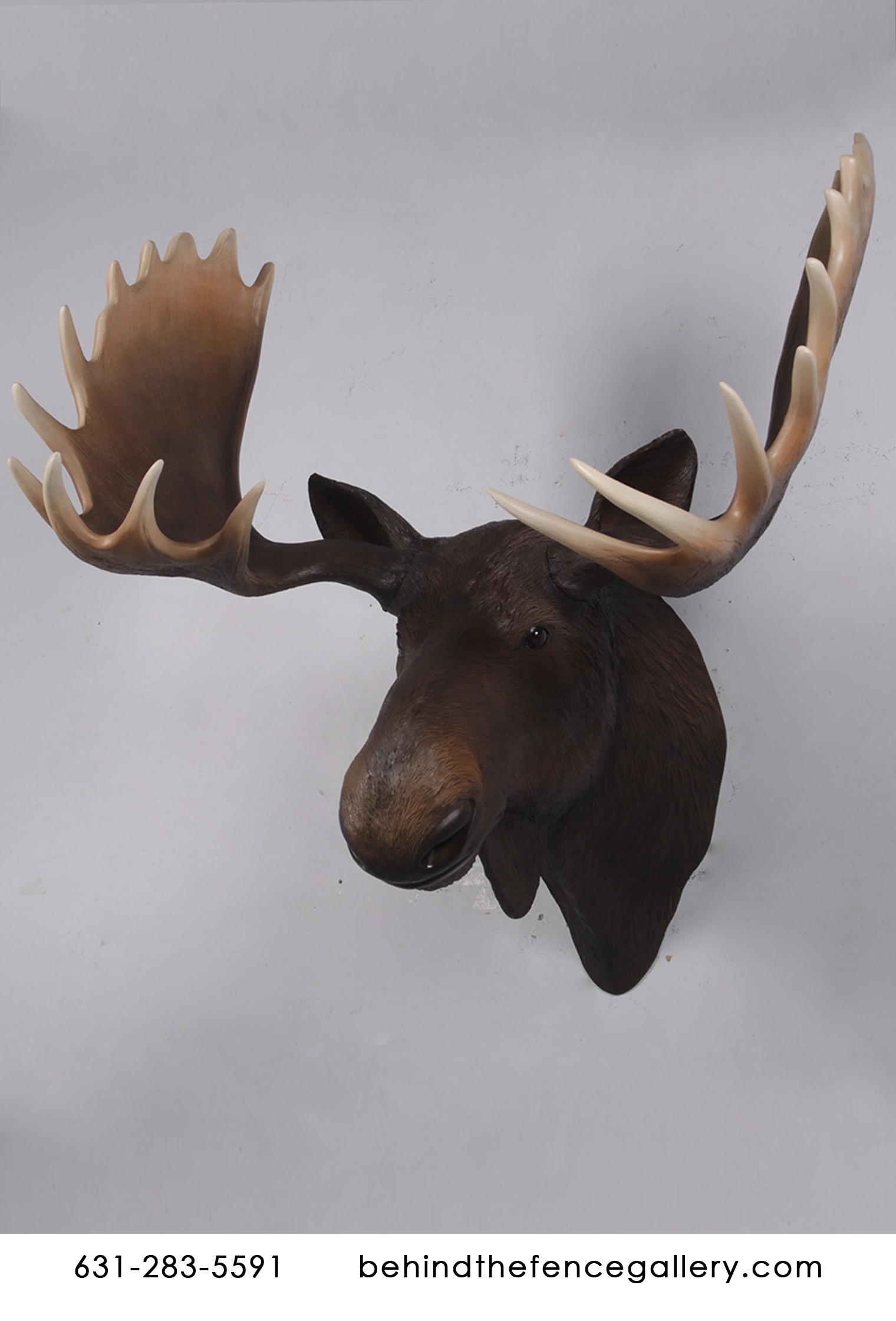 Wall Mounted Moose Head Statue