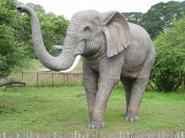 Elephant ( Big ) Trunk-up