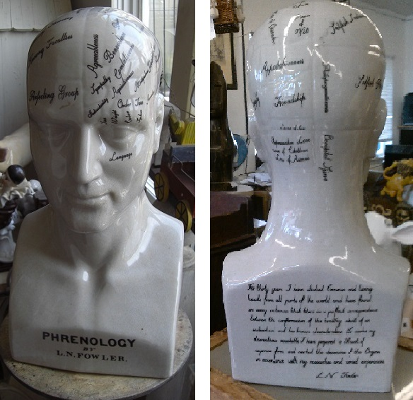 Phrenology Head Statue