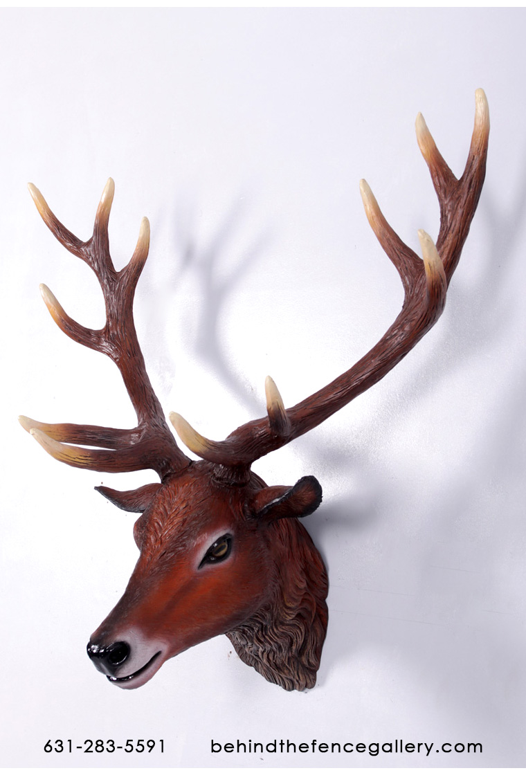 Red Deer Stag Head Wall Mount