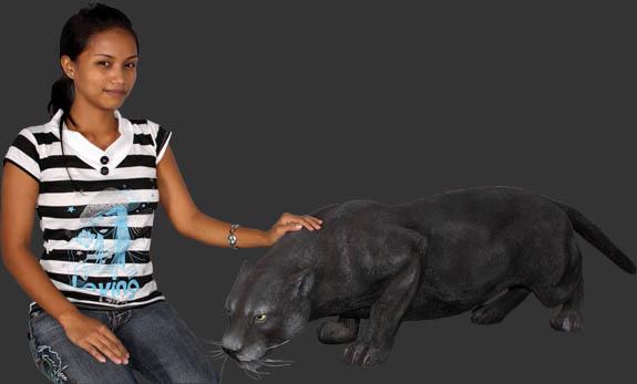 Black Panther Fibergl