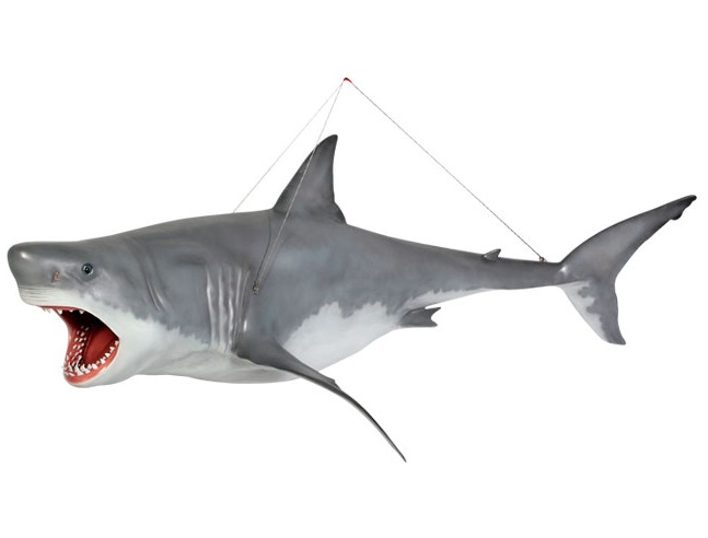 Great White Shark - Hanging / Fiberglass