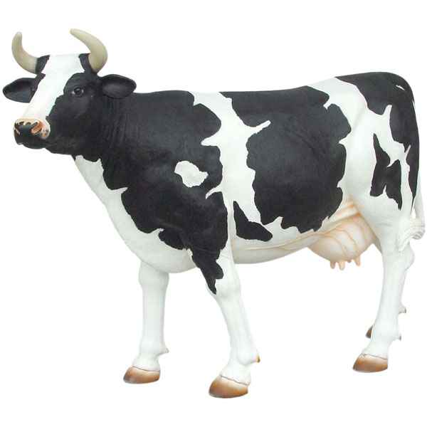 Black and White Cow - Life Size (with or without Horns)