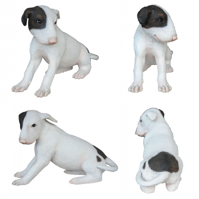 Bull Terrier Dog Puppy
