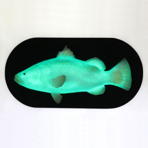 Fish Wall Decor with LED