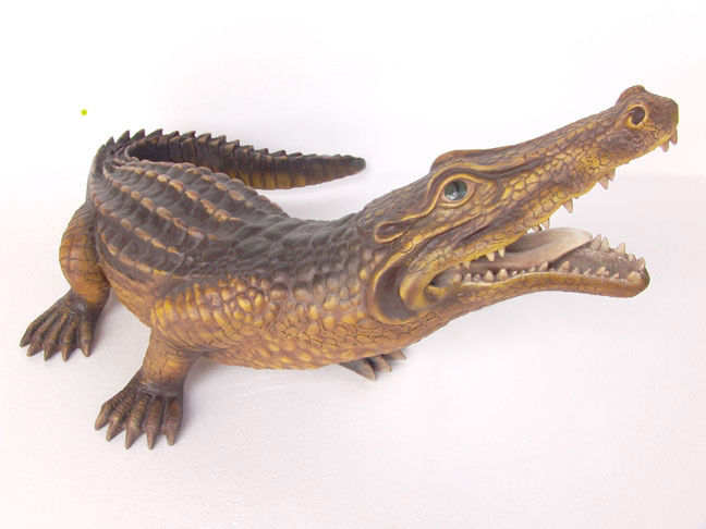 Crocodile 4 Ft Long