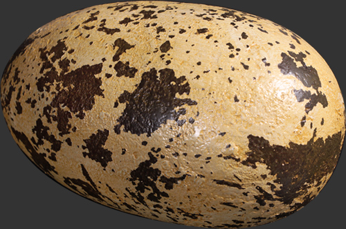 Theropod Egg 9""