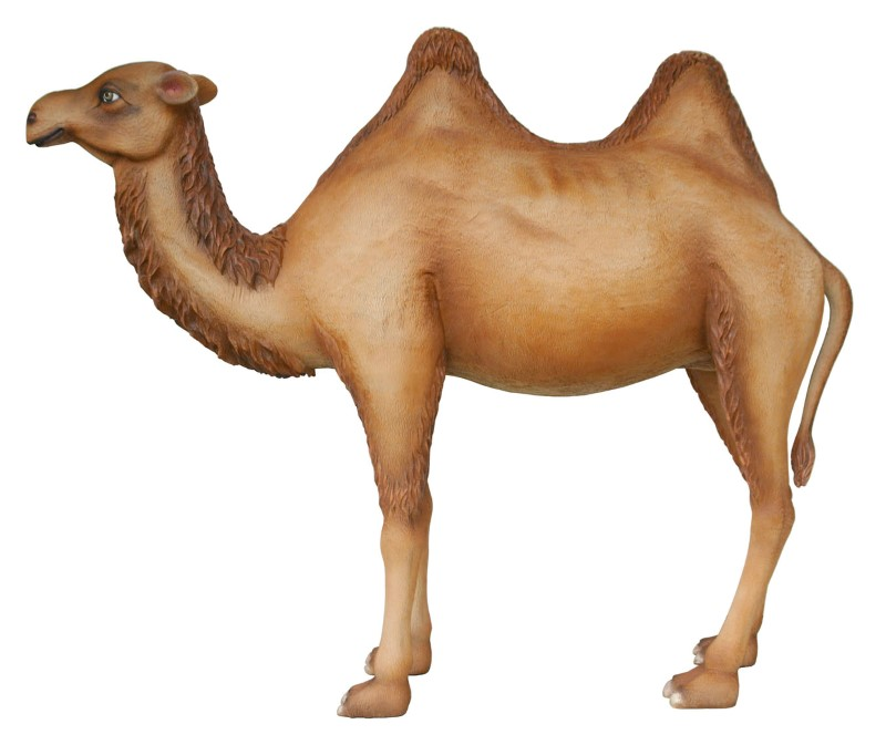 Camel (7 Ft. Tall)