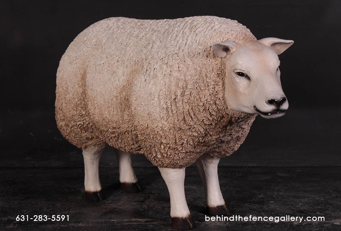 Texelaar Ewe Sheep - Head Up Statue